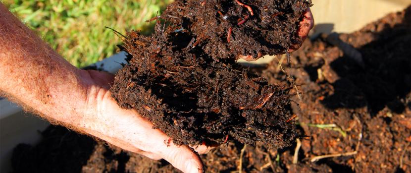 ¿Por qué es necesario realizar un análisis de suelos?